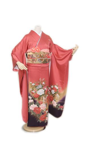 ピンク牡丹_ai002