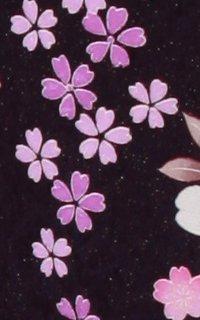 紫露花_i049