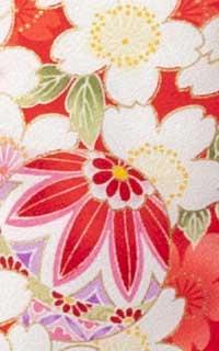 朱さくら桜