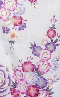 白紫ばら(U)