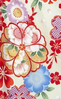 祝い桜ベージュ(U)