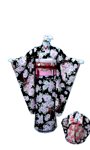 pom黒桜犬