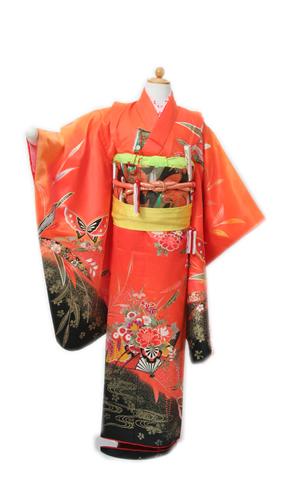 オレンジ竹花車