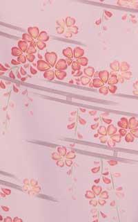 うす桜眺め