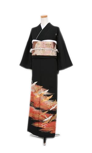 鶴と波_tmk0058