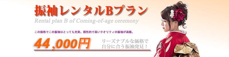 振袖レンタルBプラン(¥41,000)