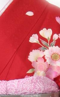赤しだれ桜