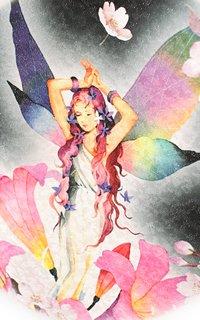 黒春の妖精