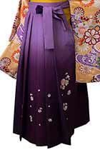 藤×紫八重桜