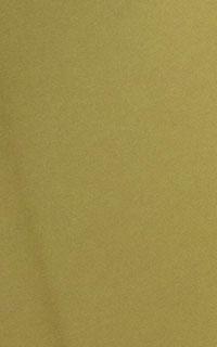 黄緑ねじり梅