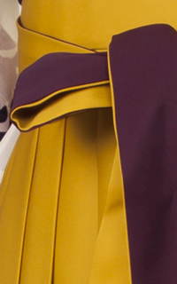 黄紫ぼかし(明)