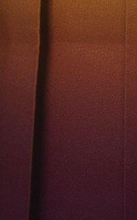黄紫ぼかし暗