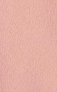 ピンク一つ紋