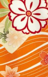 のし梅オレンジ