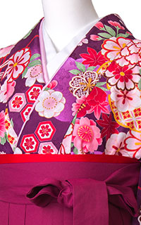 亀甲桜紫(U)