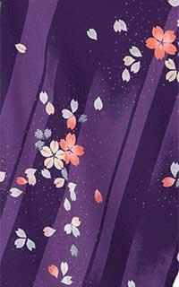 紫たてじまに桜