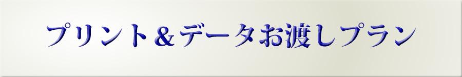 dataprintbar.jpg