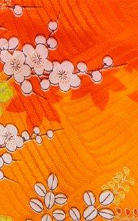 オレンジ花車