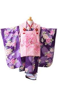 P被布紫牡丹