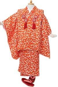オレンジ椿