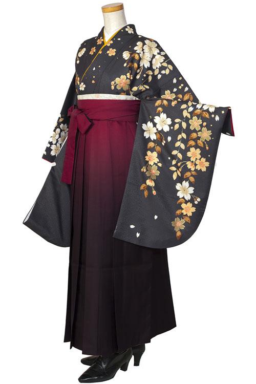 うす黒金桜